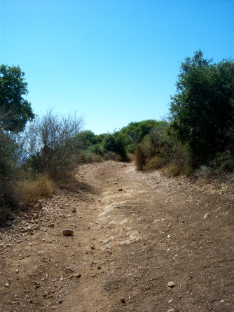 Mt. Carmel path