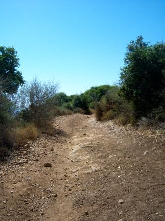 Mt. Carmel path
