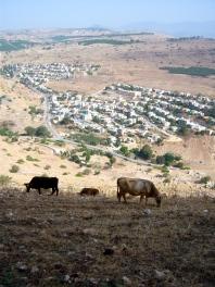Magdala, home of Mary Magdalene