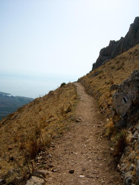 Arbel path